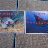 慶良間ダイビングに行ってきました!記念ダイブをご一緒に!